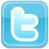 Follow Versital on twitter - twitter logo